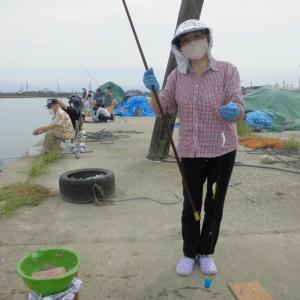 アジ釣りに新湊漁港まで