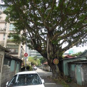 臺灣の日本遺構:建國北路一段ほかの古民家群