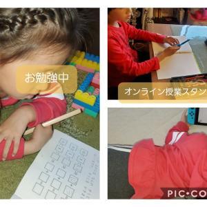 追加された小学校の宿題