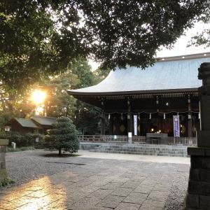 拝殿○七つ宮○光の祝福の中へ○喜多見氷川神社2○