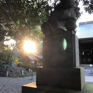 狛犬さん○せたがや百景○喜多見氷川神社3○