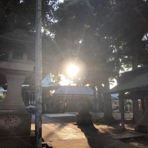 烏山神社4~光のサイン。鳥居、龍神。