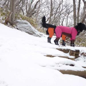 お友達と那須に雪遊び