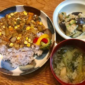 野菜いっぱいのカレーと初めて作った米なすのみぞれ和え