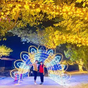 松山城光のおもてなし