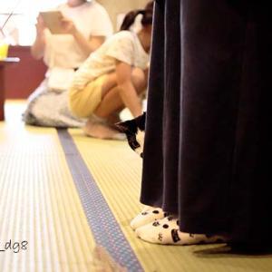 Vol.3362 大阪市心斎橋 ネコリパブリック大阪心斎橋店 その3 猫じゃらしタイム
