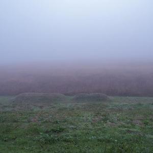 こんな日もあるさ、深すぎる霧