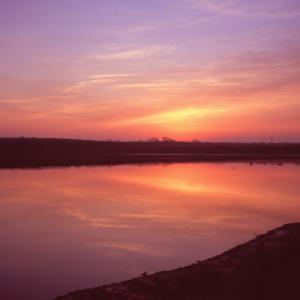 プロビアで渡良瀬の夜明け