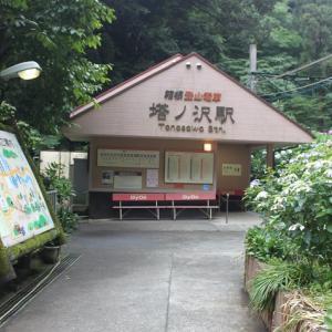 秘境駅へ222 ~塔ノ沢駅(箱根登山鉄道 鉄道線)~