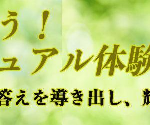 シンクビック(正見)