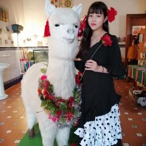白でも黒でもない世界で、パンダは笑う。見てました