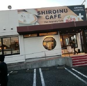 動物カフェの視察 千葉県流山市