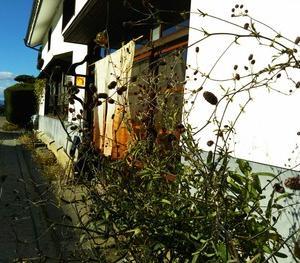海野宿「橙カフェ」にお邪魔しました。
