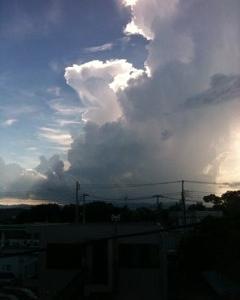 富士山が見えるんです(*?-?*)