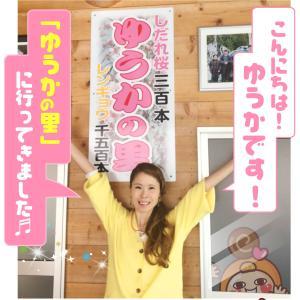 [ゆうか]徳島のしだれ桜「ゆうかの里」