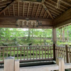 財運UPの御利益ありそう♪金澤神社のエネルギー