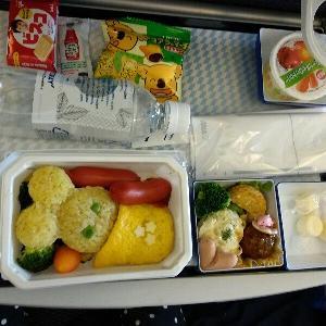 一時帰国、機内食等