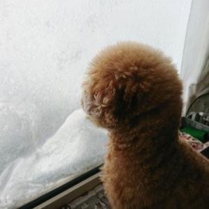 吹雪~~~