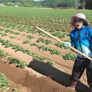 【遠藤さちえ】です~引き締まって+収入アップ(農家の良さ)٩(^‿^)۶