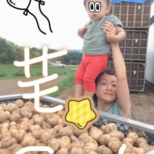 【遠藤さちえ】です~芋と息子(о´∀`о)