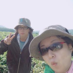 【さちえ】です~ビートの草取り2回目~~(^_-)-☆