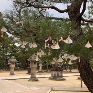 天橋立で股のぞきはせずに…扇子のおみくじで有名な智恩寺へ…からの地元民の集う絶品グルメを食べに♪