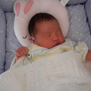 3人目の孫誕生