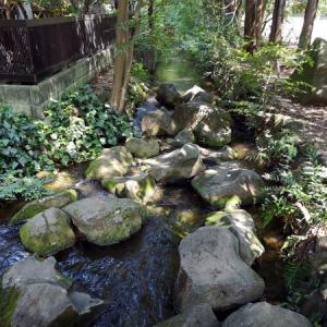 井の頭恩賜公園散策