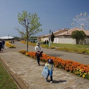 三浦半島で春を満喫 ~ソレイユの丘、イチゴ狩り~