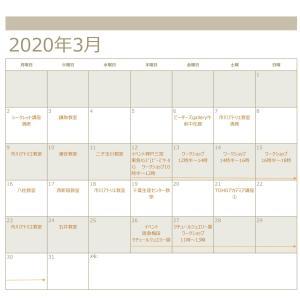 講座予定+α【3 月】