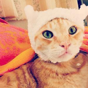 帽子を被せてしまいました(^.^)