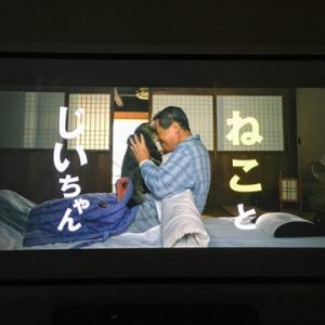 ねこ目線の映画、岩合光昭のねことじいちゃん