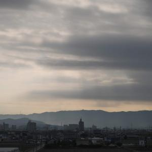 風邪から回復の平常運転、矢作川ロング