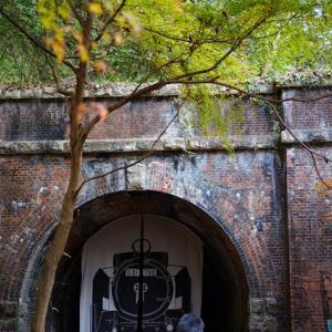 愛岐トンネル群 秋の特別公開で通り抜け体験、紅葉パトロール2020その5