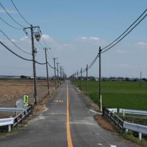 湿気の多い台風の尾、矢作川ロング