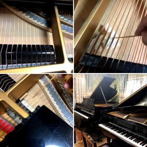 今年の長雨にピアノが悲鳴をあげてます