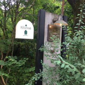 五感を感じて癒される森の中のカフェ