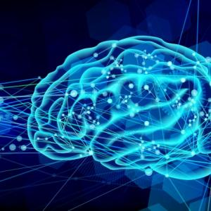 【モニター募集】脳傾向性診断&解析セッション