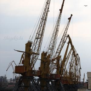 オデッサ一番の見所はオデッサ港!