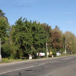 チェックポイント:DytiatkyとZalissya村 - チェルノブイリツアー