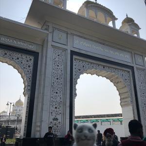 Bangla Sahib Gurdwara / デリー ■ 北印度&ネパール [03] 聖者食卓