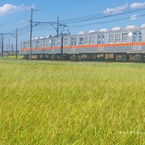 北陸鉄道石川線の営業用車両すべて見せます