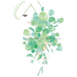 大好きな緑の季節---オリジナルイラスト