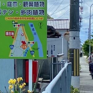 3年ぶりの養庄園さん2021夏