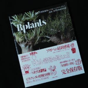 次々と出るビザール植物本