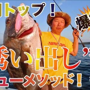黒鯛トップ!ニューメソッド「誘い出し」で爆釣!後編