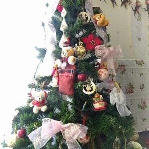 無事にクリスマスのお迎え