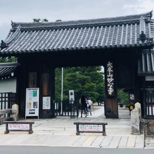 妙心寺 退蔵院