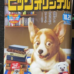 「ビッグコミックオリジナル」に大井詩織先生の読み切り作品掲載中
