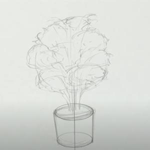 ワンポイントレッスン「観葉植物を描こう♪」